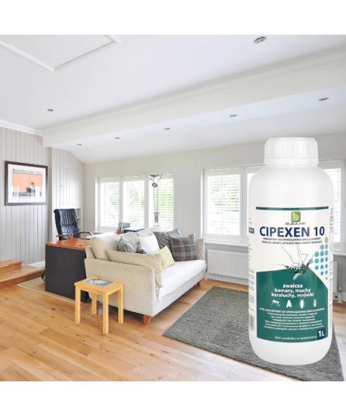 Karmnik kamień Protecta piaskowy - na myszy i szczury