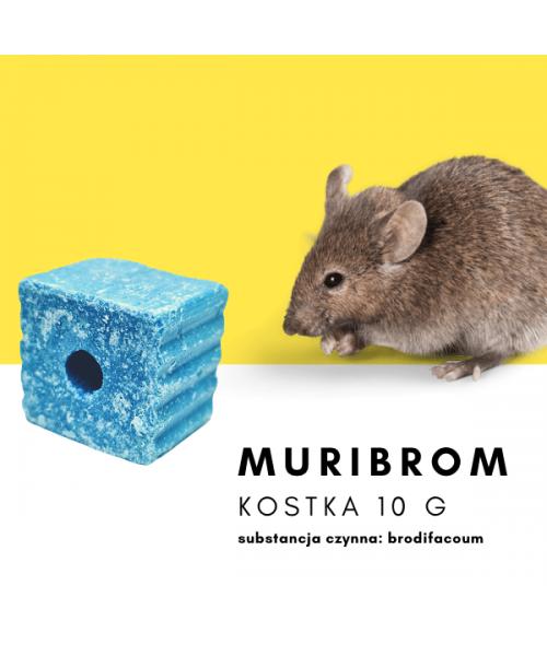 Nośnik Vk-2 Specjal 80 EC 20L